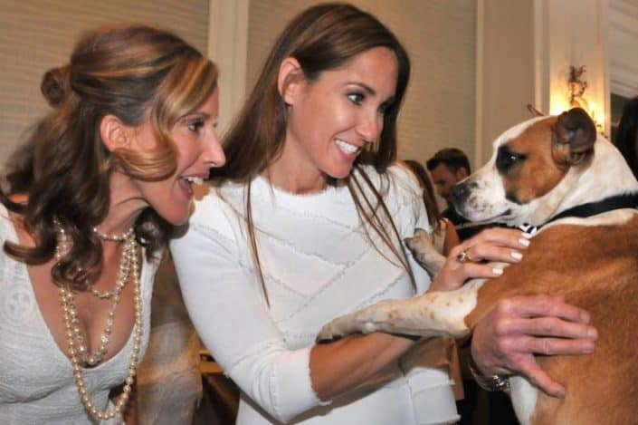2017 Paws on the Catwalk Humane Society of Sarasota County