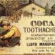 toothache tooth pain sarasota