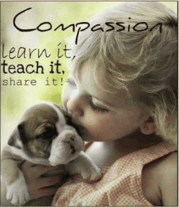 dental technology and compassion