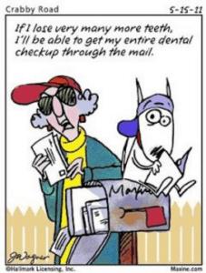 dental checkup sarasota