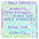 dental emergency broken tooth sarasota